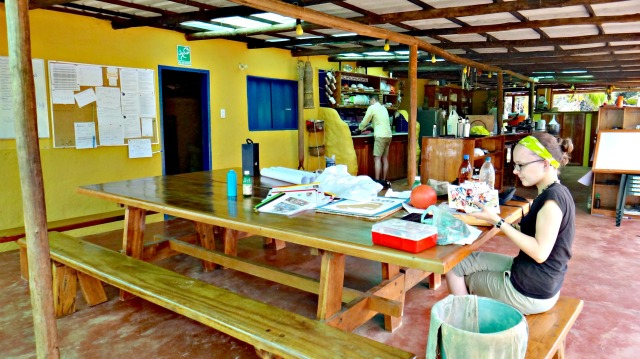 Cooperative living at Aldeas de Paz.